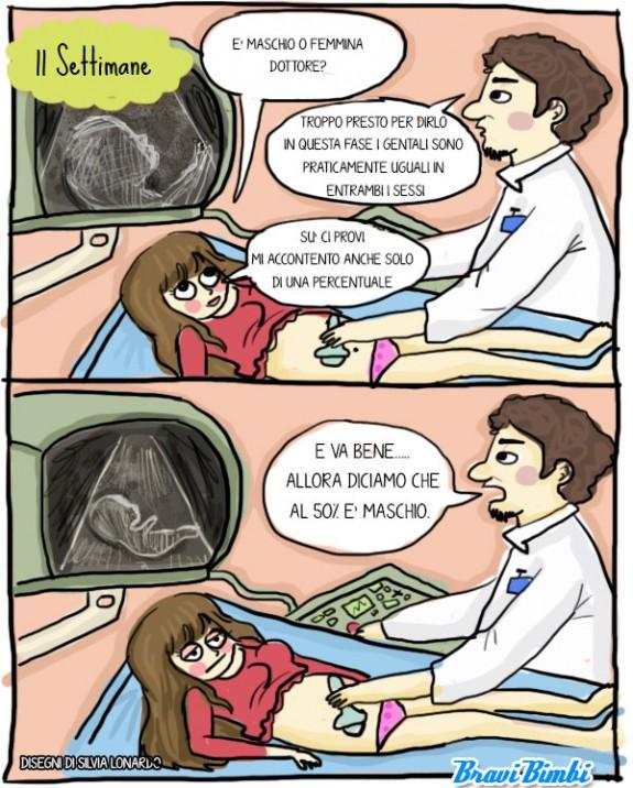 11 settimane di gravidanza, vignetta