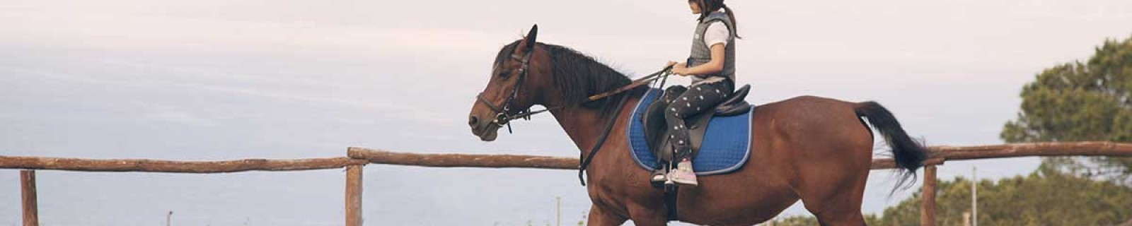 a-cavallo