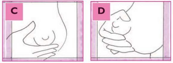 come spremere il seno